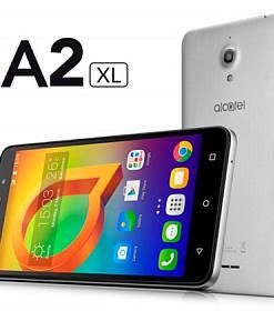 a2xl2